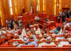 Insecurity: Senate moves to establish Commission against illegal weapons, small arms